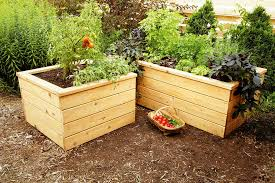 how to build a self watering timber garden planter