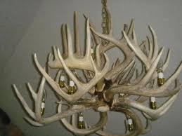 antlers lighting chandelier antler chandeliers lighting company