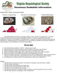 Snake Identification Chart Snakes Of Virginia