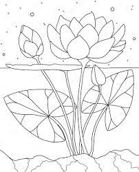 Lotus In Het Water Boek Kleurplaat Stockvector Runlenarun