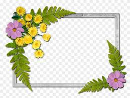 Paper Flower Frame Writing Paper Flowers Frames Free Transparent Png Clipart Images