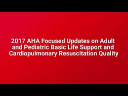 2017 Focused Updates On Adult Pediatric Bls Cpr Quality