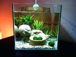 office fish tank. Office Fish Tanks Desk Tank Ornaments Ideas Aquarium For Top . O