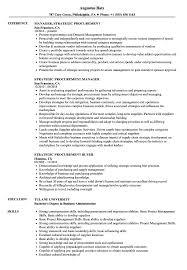 Strategic Procurement Resume Samples Velvet Jobs