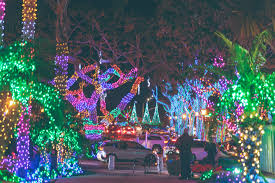 Dana Point Harbor Christmas Lights Celebrate The Most Wonderful Time Of The Year At These 12