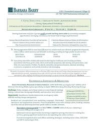 C Level Resume Samples C Level Resume Samples Gallery Creawizard 22