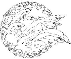 Small Picture Flippers Jumping from the Sea Mandala Animal Coloring Pages Bulk