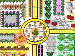 Small Picture Garden Layout Planner Designing Your Vegetable Garden Layout