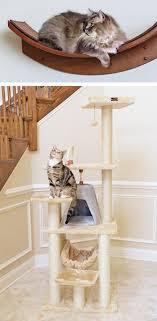 7 steps to creating a cat friendly home