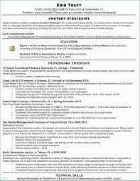 Cover Letter Examples For Job Promotion Cfo Resume Template