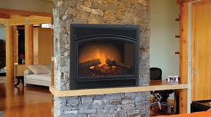 image of decorative fireplace inserts
