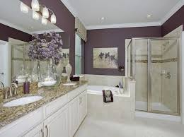 Innovation Master Bathroom Decorating Ideas Good Looking Decor And