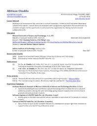 Software Engineer Resume Summary Reference Resume Summary For