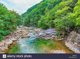 River with rocks and stones in mountain forest in South Korea