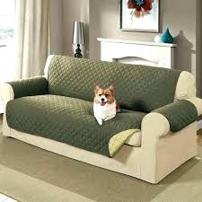 sofa pet covers. Pet Furniture Covers Outstanding Couch Cat Proof Slipcovers Sofa .