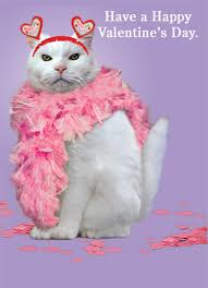 valentine cat images. Plain Cat Valentine Cat Ecard Cover Intended Images A