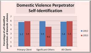 New York State Domestic Violence Dashboardproject 2013 Data