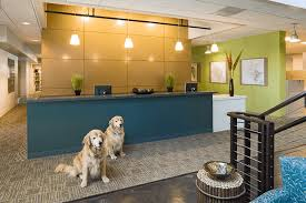 reception areas. Reception Areas. Areas E