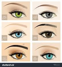 set diffe female eye shapes upturned stock vector 319274219 eyeshadow guide image main eyelinereyeshape