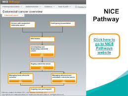 implementing nice guidance ppt  click here to go to nice pathways website