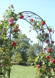 Small Picture Leanders lovely rusted iron Rose Arch has a traditional
