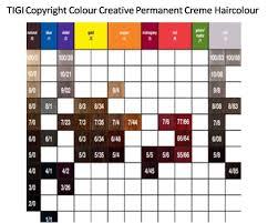 Igora Vibrance Shade Chart Igora Viviance Color Chart Schwarzkopf Igora Viviance Color