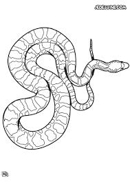 S Dessin Coloriage A Dessiner Serpent Cobra L L L L L L L