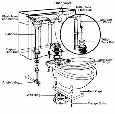 Toilet parts appealing toilet bowl parts to a tank pictures best idea home design repair