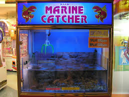 Lobster Vending Machine Unique Catchalivelobster Machine Osaka