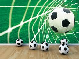 Voetbalbehang Goal Afmeting 368 Cm Breed X 254 Cm Hoog Materiaal