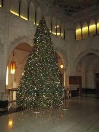 Parliament Hill and Buildings: Christmas Tree Parliament Hill Ottawa  November 2014