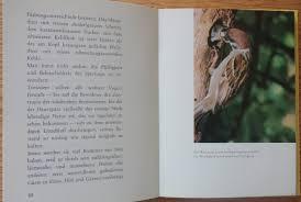 Vögel Am Fenster Die Fütterung Im Winter Fortunatus Buch
