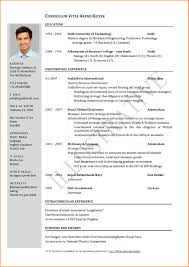 Single Page Resume Template Custom Fascinatingne Page Resume Template Templates Examples To Download