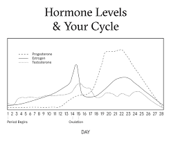 How Your Hormones Affect Your Skin Before During After