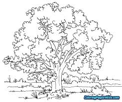 Nature Coloring Pages For Adults Landscape Coloring Pages For Adults