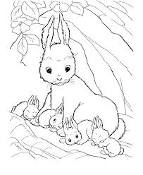 Baby Farm Animal Coloring Pages 17 Best Ideas About Farm Coloring