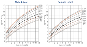 40 Actual Percentile Chart For Breastfed Babies