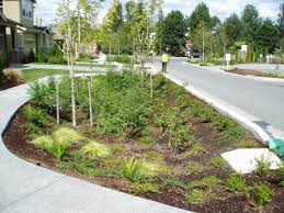 Small Picture 112 best Stormwater images on Pinterest Rain garden Landscape