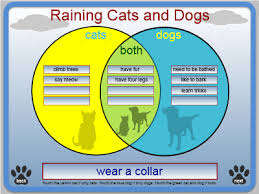compare and contrast dogs and cats cz how do you write literature review