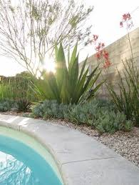 Desert Backyard Designs Stunning Modern Desert Landscaping Design Pictures Remodel Decor And Ideas