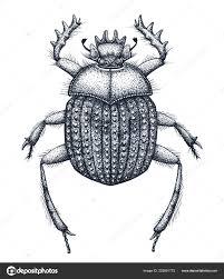 священный жук скарабеев тату искусства точка работы татуировки