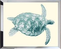 seaturtle framed wall art available in a variety of sizes
