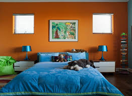 Living Ideas For Colour Combination Wall Color Living Room Blue Bedding