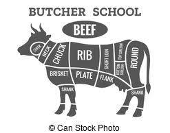 beef cuts diagram poster. Beautiful Diagram Cow Butcher Diagram In Beef Cuts Diagram Poster C