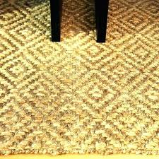 lowes carpet specials. Lowes Outdoor Carpet Indoor Prices Carpets Home Depot Rugs Jute Rug With Specials A