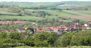 10 sate de poveste, nu departe de Timisoara, unde poti gasi o casa de