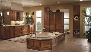 Minneapolis Kitchen Remodeling Kitchen Remodel Showrooms Minneapolis Piknie In Elegant Kitchen