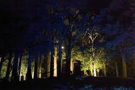 exterior lighting solutions nz. landscape lighting design_insight light_nz #13 totata.jpg exterior solutions nz u