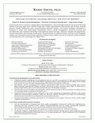 Sample Executive Resume Format Delectable Sample Of Executive Resumes Sample Of Executive Resumes