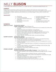 General Construction Laborer Job Description And Outlook Carpenter ...
